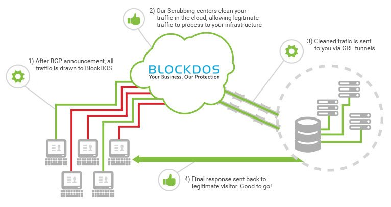 website security and clean traffic data image-Blockdos